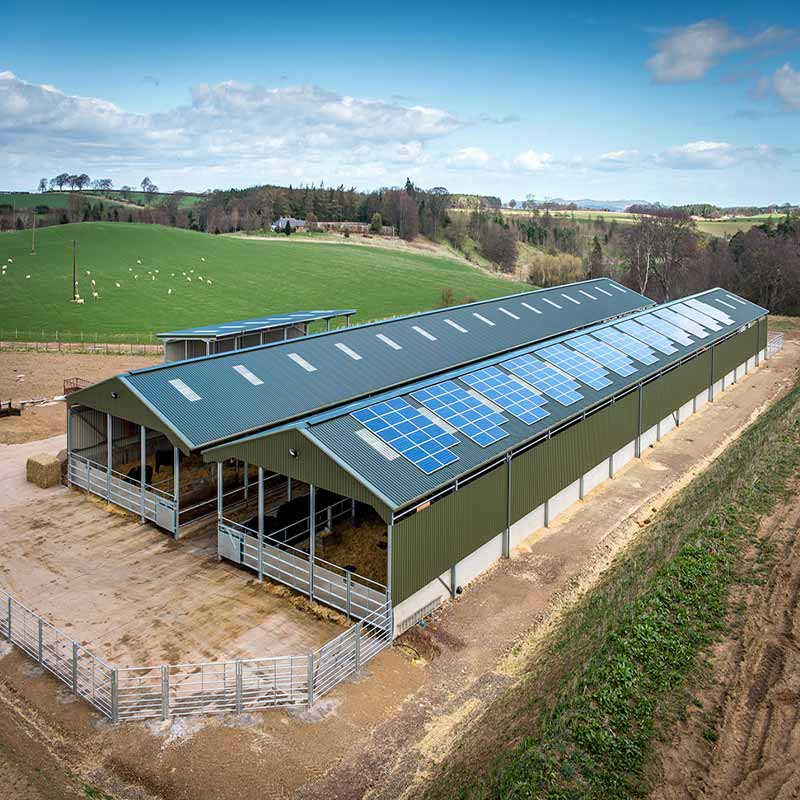 Prefabricated Steel Structure Poultry House Chicken Farm Shed